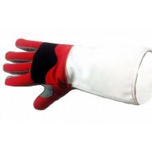 Collegiate Deluxe Glove